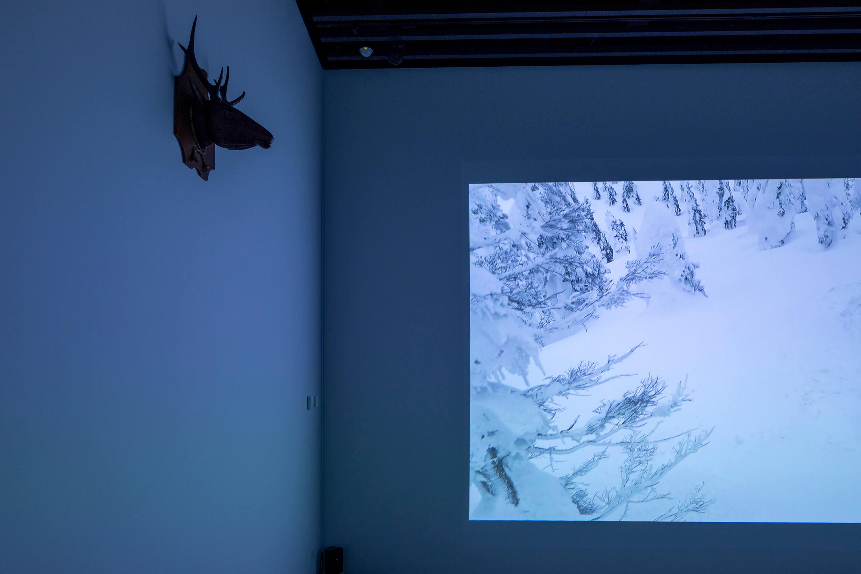 鴻池朋子 ちゅうがえり 映像の部屋